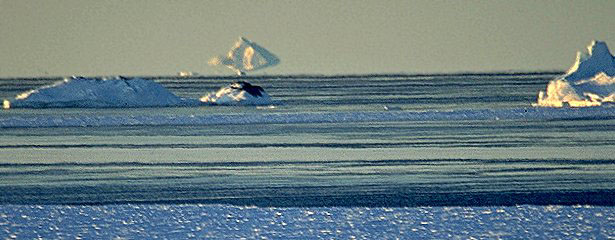 mirage_iceberg