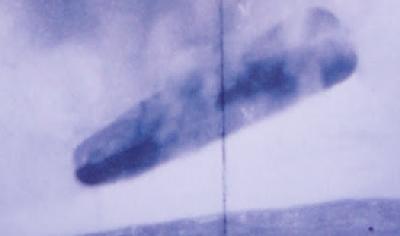 official trepang ufo 10